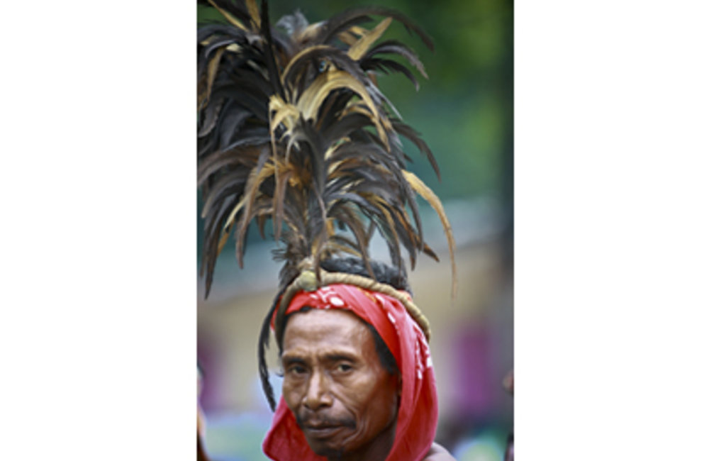 During a ceremony, a man from Same wears the traditional Manu-Fulun headdress made of rooster feathe
