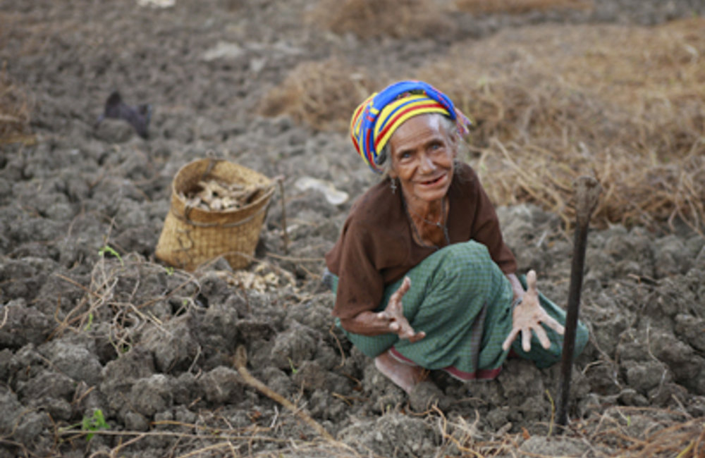 A woman from Lesuata weeds her field. Photo by UNMIT/Martine Perret