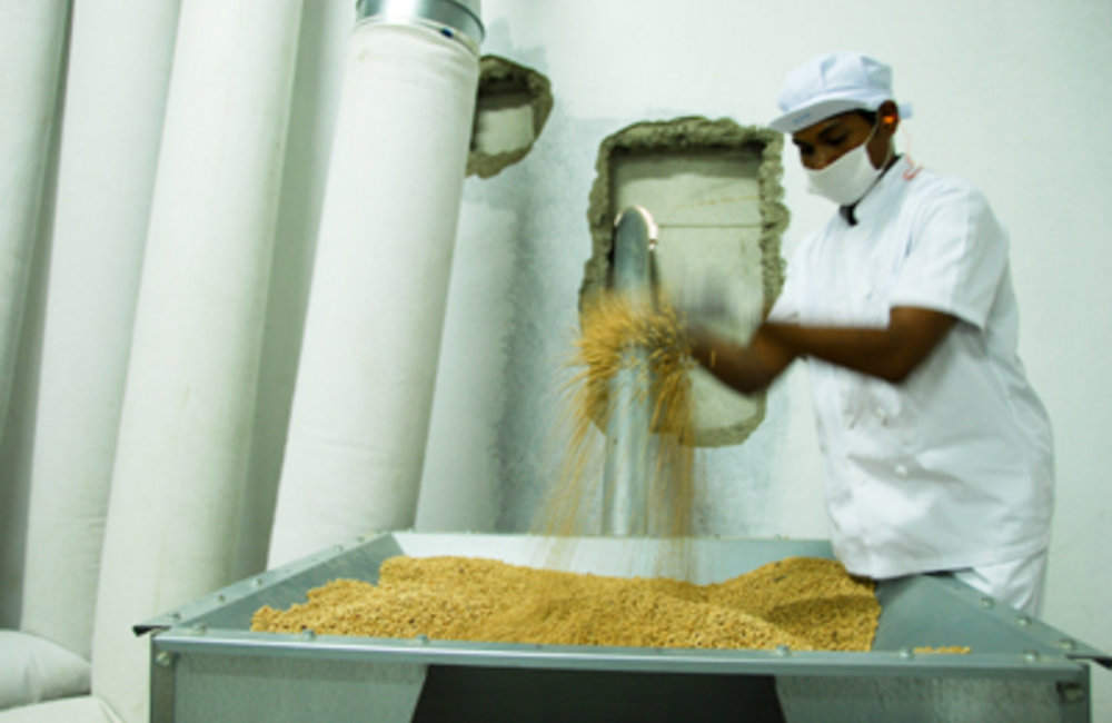 A new food fortification factory has been set up in Timor-Leste with assistance from the UN World Fo