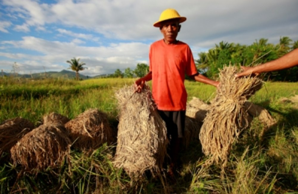 Today is International Day for Disaster Reduction. Timor-Leste is vulnerable to natural disasters an