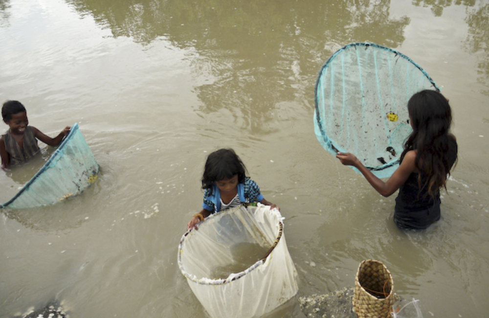 Young girls from Loro, a sub-district of Suai, use traditional nets to catch prawns and crabs from a