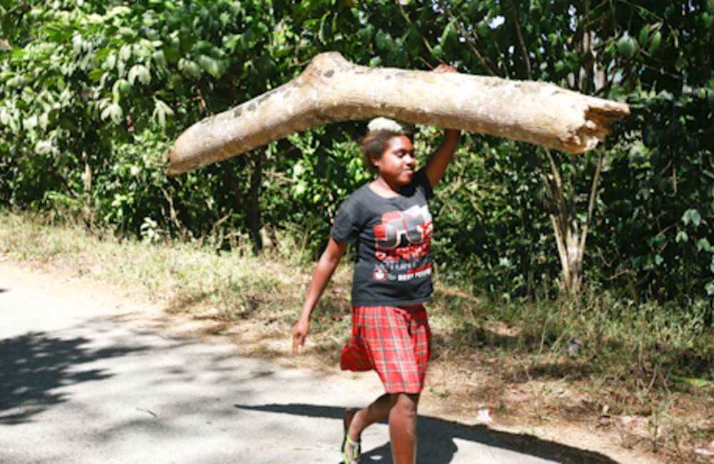 A young girl from Ermera carries a tree trunk to Gleno market.Photo UNMIT/Martine Perret