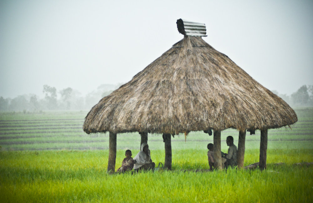 Farmers from Maliana take shelter from the rain under a traditional structure know as a 'Baraka'. Ph