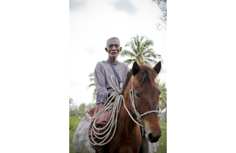 A farmer from Suai uses horses as a means of transportation to facilitate his daily work. Photo By U
