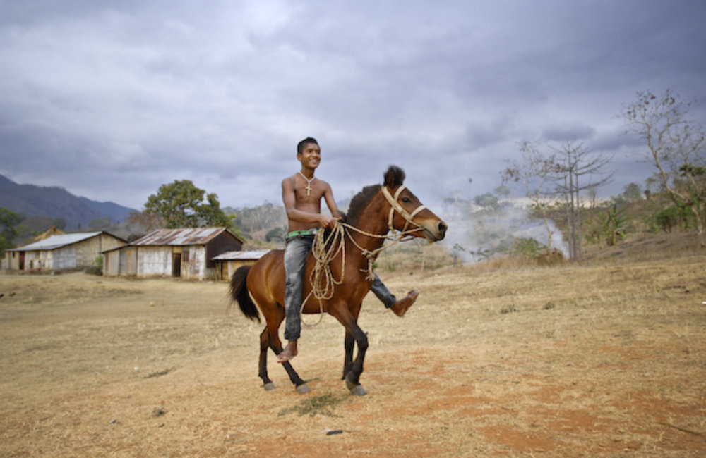 Horse riding is for many people in rural areas a mean of transportation and carrying goods. Photo by