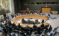 Verbatim record of the Security Council meeting on Timor-Leste
