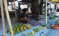 Helping people help themselves – Microfinance in action in Timor- Leste
